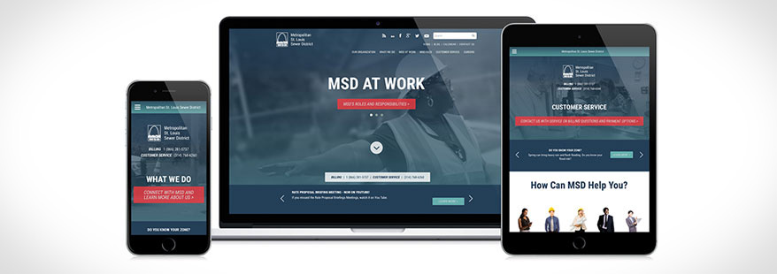 New Drupal Website For MSD